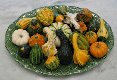 Gourd Table Centerpiece
