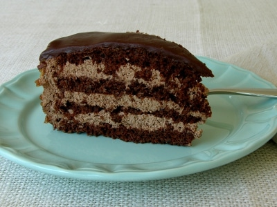 A slice of a chocolate pecan torte.