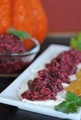 Spicy Cranberry Relish