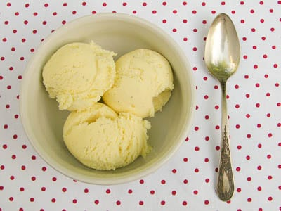 Homemade Vanilla Bean Ice Cream | Magnolia Days