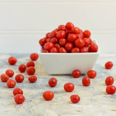 Goji Berries | Magnolia Days