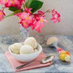 Peanut Butter Ice Cream   Magnolia Days