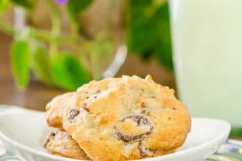 Coconut Pecan Chocolate Chip Cookies | Magnolia Days