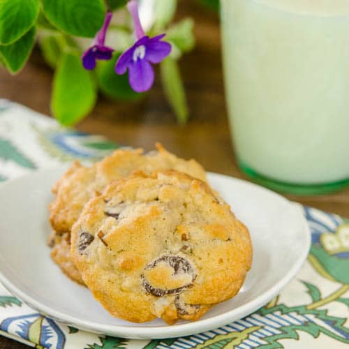 Coconut Pecan Chocolate Chip Cookies | Magnolia Days
