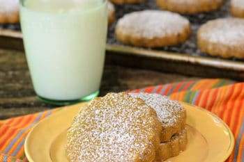 Cinnamon and Piloncillo Cookies | Magnolia Days