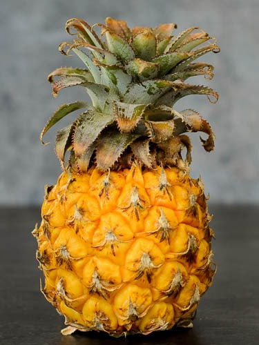 Zuzuland Queen Baby Pineapple   Magnolia Days