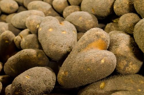 Heart Shaped Potato | Magnolia Days