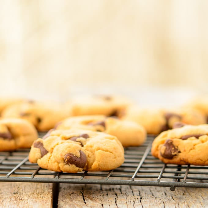 Caramel Chocolate Chip Cashew Butter Cookies   Magnolia Days