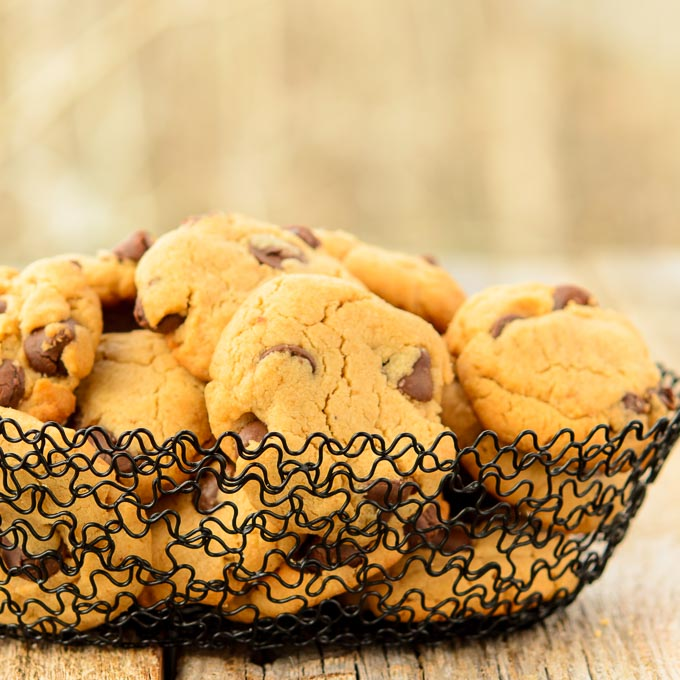 Chocolate Chip Cashew Butter Cookies