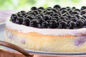 Crustless Creamy Blueberry Swirl Cheesecake | Magnolia Days