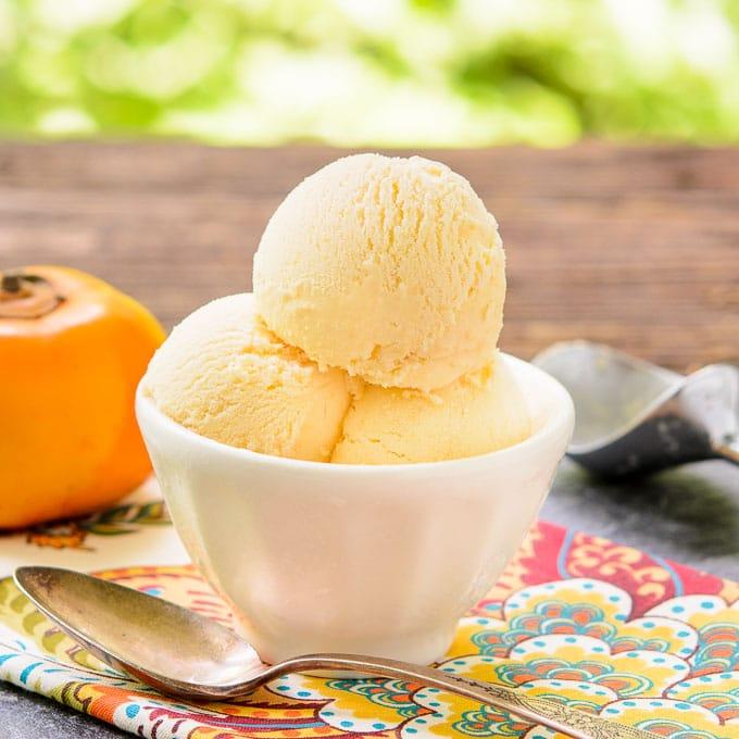 Persimmon Gelato | Magnolia Days