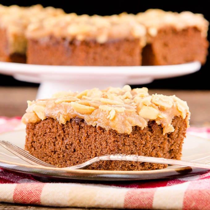 Peanut Butter Chocolate Cola Cake   Magnolia Days
