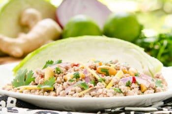 Nam Sod Thai Pork Salad | Magnolia Days