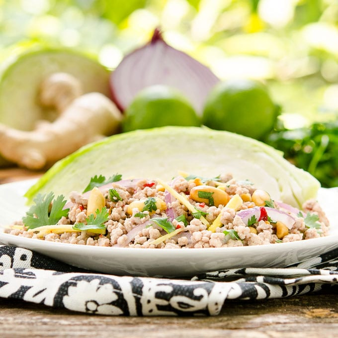 Nam Sod Thai Pork Salad   Magnolia Days