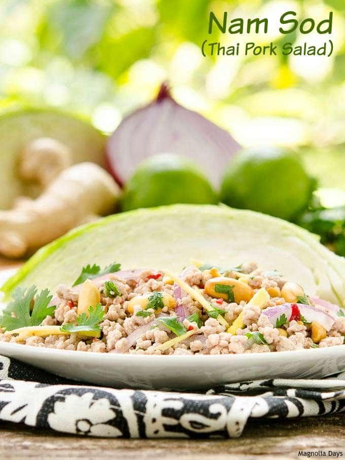 Nam Sod (Thai Pork Salad)   Magnolia Days