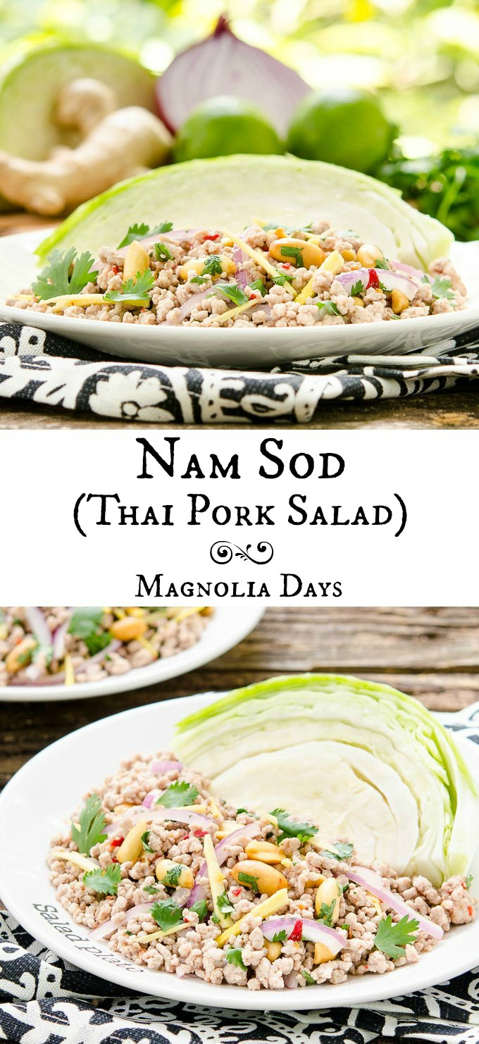 Nam Sod (Thai Pork Salad) is a healthy meal full of flavors including lime, chile, onion, ginger, peanut, and cilantro. Serve it with cabbage wedges.