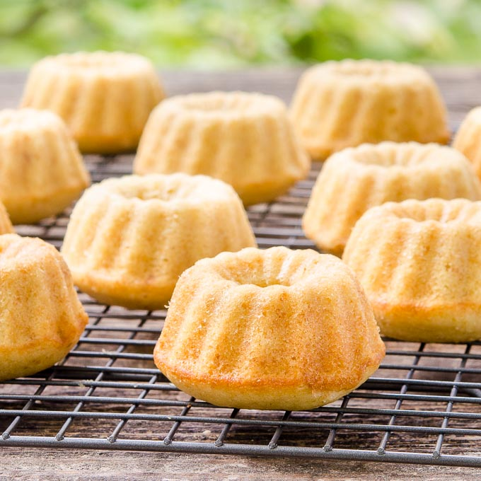 Graham Cracker Mini Bundt Cakes | Magnolia Days