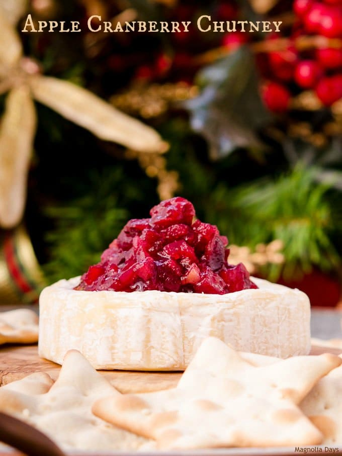 Apple Cranberry Chutney has a spicy kick with jalapeño peppers. It is fantastic with turkey or served as an appetizer with brie or cream cheese.