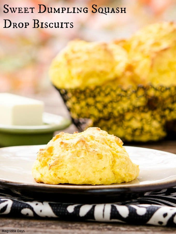 Sweet Dumpling Squash Drop Biscuits are wonderful for fall and holiday meals. Only need 4 ingredients and a few hands-on minutes to make them.