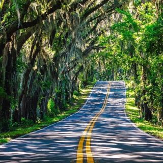 10 Amazing Photos That Prove Florida Is a Southern State