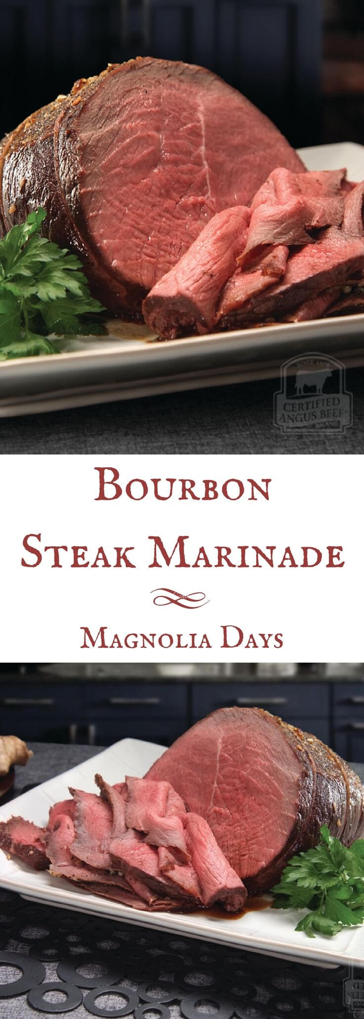 Marinate any cut of steak with this Bourbon Steak Marinade! This recipe comes from the beef experts at Certified Angus Beef, so you know it's a good one.