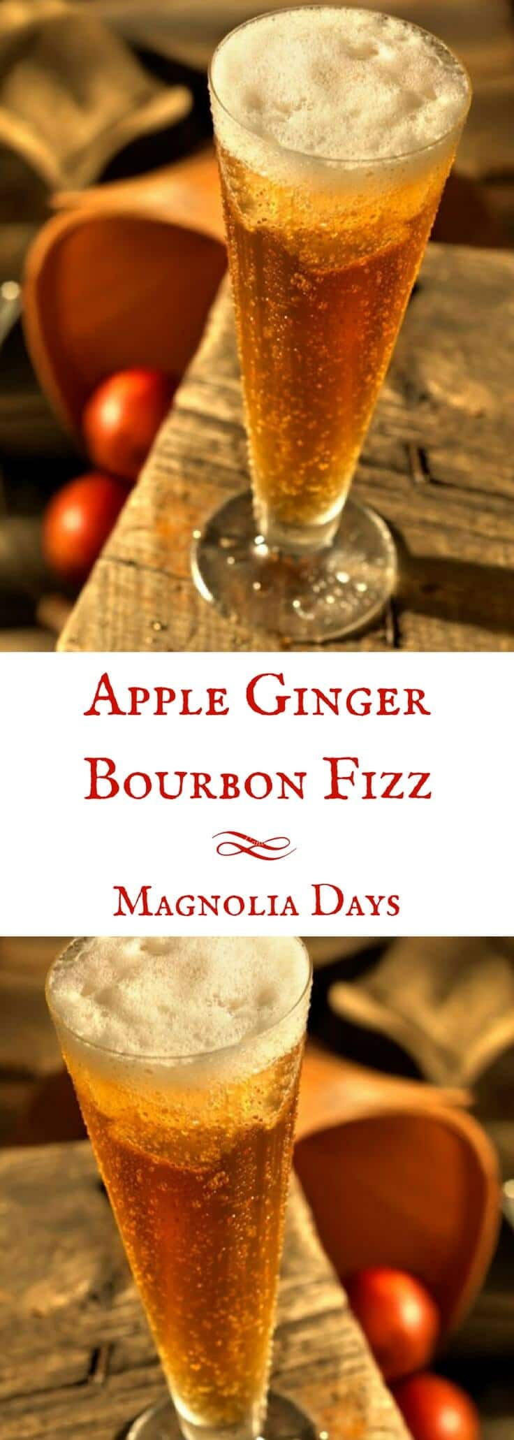 The classic fizz cocktail gets a Southern twist with bourbon, apple butter, and ginger beer instead of plain soda.  Try this Apple Ginger Bourbon Fizz at your next shindig.