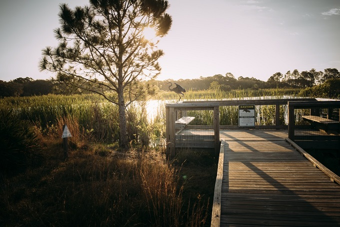 Sunset over Florida wetland with wooden walkway in Panama City Beach